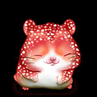 Adopte un(e) Hamster Amanite