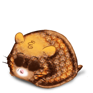 Adopte un(e) Hamster Ananas