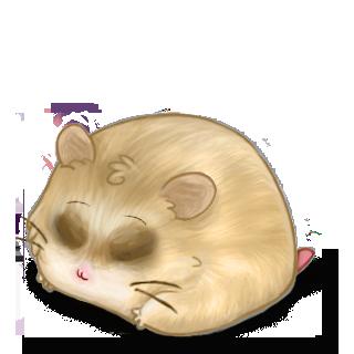 Adopte un(e) Hamster Beige Brun
