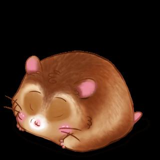 Hamster Beige doré