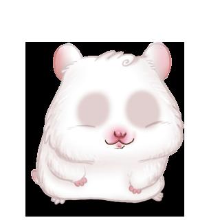 Adopte un(e) Hamster Blanc