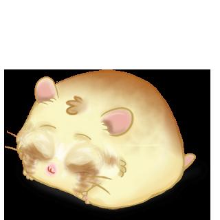 Adopte un(e) Hamster Blondy
