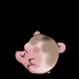Adopte un(e) Hamster Campbell