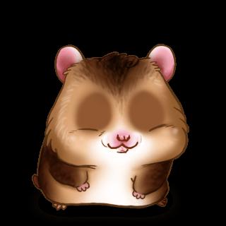 Adopte un(e) Hamster Chataigne