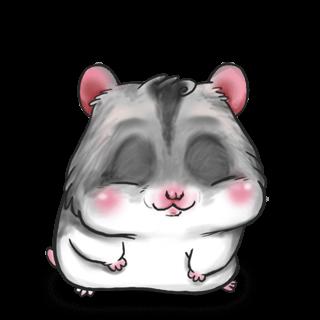 Hamster Chine