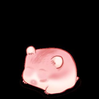 Adopte un(e) Hamster Amour