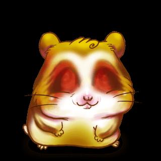 Adopte un(e) Hamster Doré
