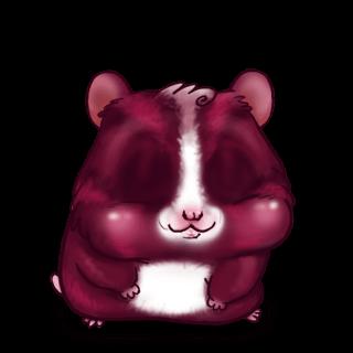 Adopte un(e) Hamster Fushia