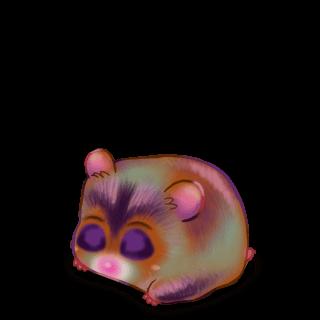 Adopte un(e) Hamster Epouvante