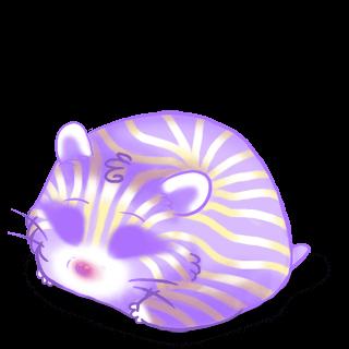 Hamster Irisor