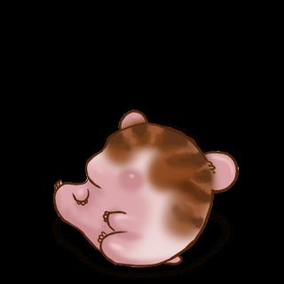 Adopte un(e) Hamster Marron rayé