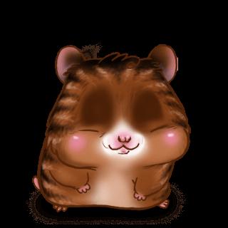 Adopte un(e) Hamster Douceur