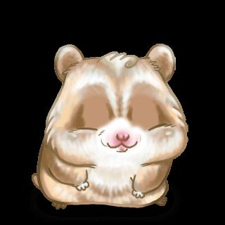 Adopte un(e) Hamster Nougat