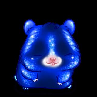 Adopte un(e) Hamster Paillettes