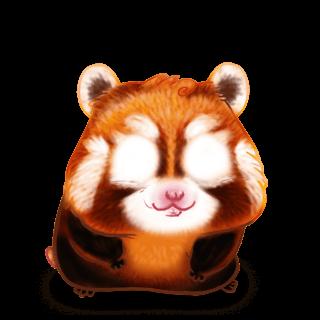Adopte un(e) Hamster Panda Roux