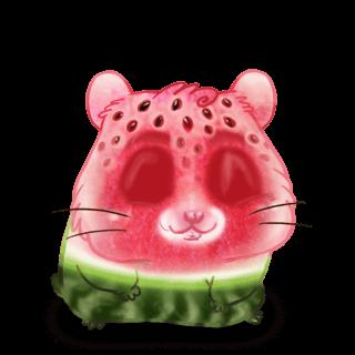 Adopte un(e) Hamster Melon