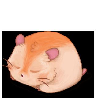Adopte un(e) Hamster Poile de carotte