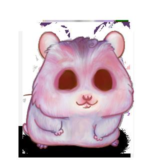 Adopte un(e) Hamster Quartz Rose