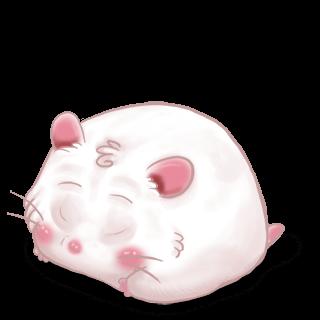 Adopte un(e) Hamster Flunsh
