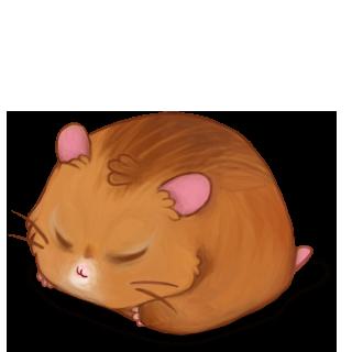 Adopte un(e) Hamster Roux Bélier