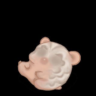 Hamster CroMimiNine