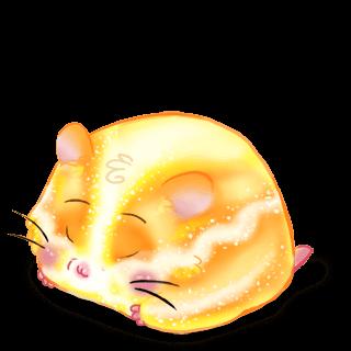 Adopte un(e) Hamster Soleil