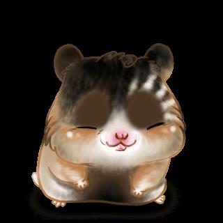 Adopte un(e) Hamster Surprise