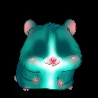 Adopte un(e) Hamster Turquoise