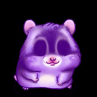 Hamster Liz