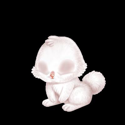 Adopte un(e) Lapin Albinos