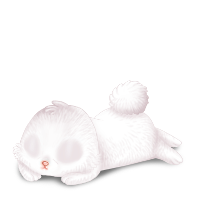 Adopte un(e) Lapin Blanc