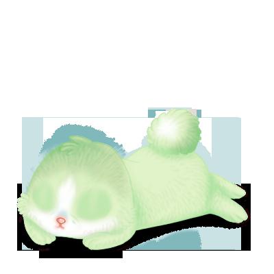 Adopte un(e) Lapin Pistache