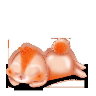 Adopte un(e) Lapin Poile de carotte