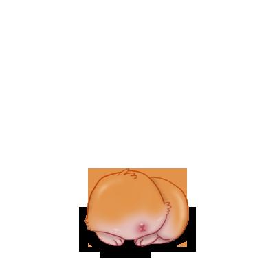 Adopte un(e) Lapin Beige Plage
