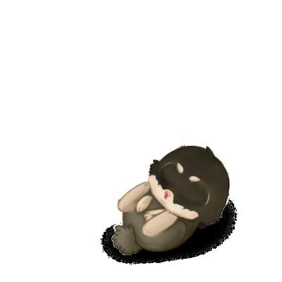 Adopte un(e) Lapin Neige
