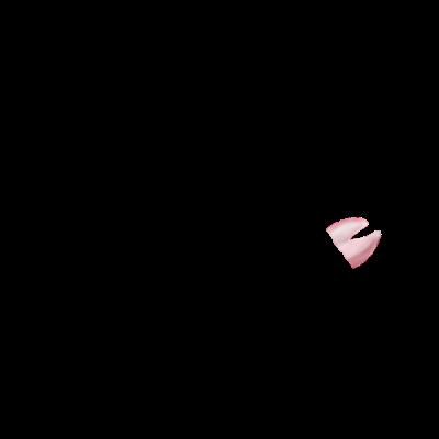 Adopte un(e) Lapin Flamant Rose