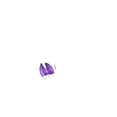 Adopte un(e) Lapin Hibou