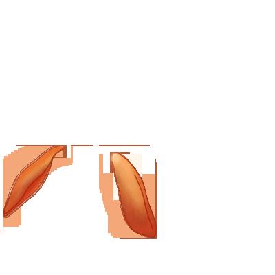 Adopte un(e) Lapin Citrouille