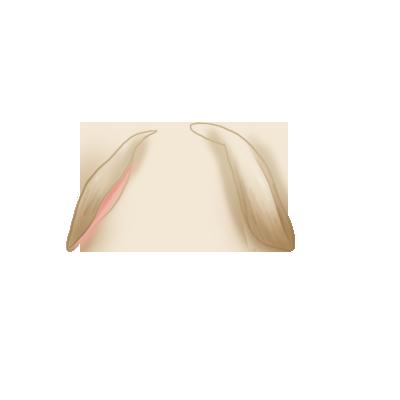 Lapin Crème