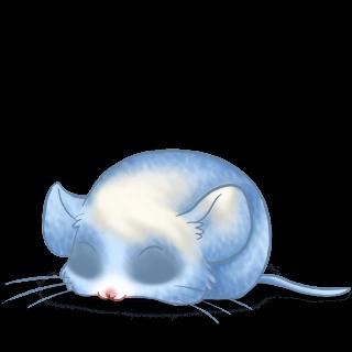 Souris Bleu Pastel
