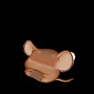 Souris Caramel