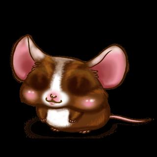 Souris Chocolat au lait