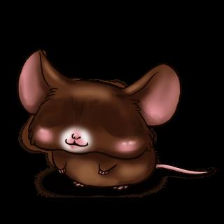 Souris Chocolat