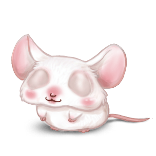 Souris Albinos