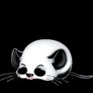 Souris Panda