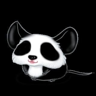 Adopte un(e) Souris Panda