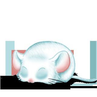 Souris White
