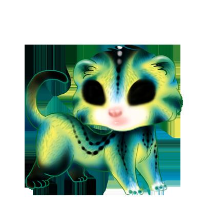 Adopte un(e) Furet Pâkœuf