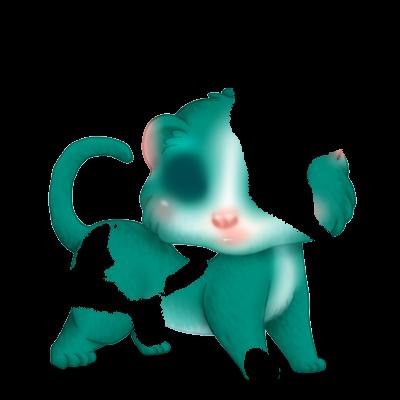 Adopte un(e) Furet Turquoise