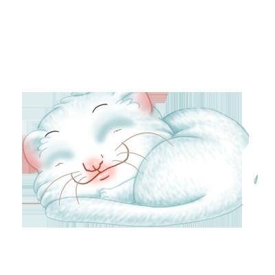 Adopte un(e) Furet Dragon Chinois